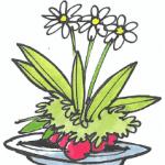 en blomsterdekoration